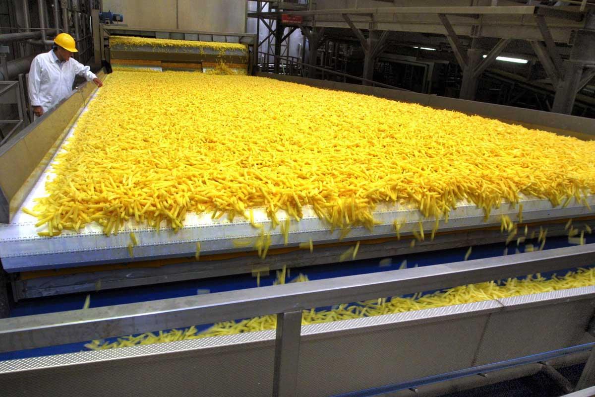 مصنع بطاطس نصف مقلية في السعودية
