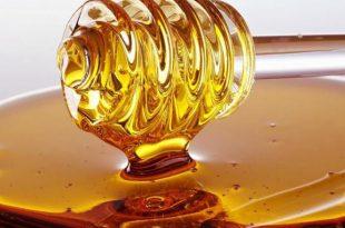 فوائد العسل للقرحة