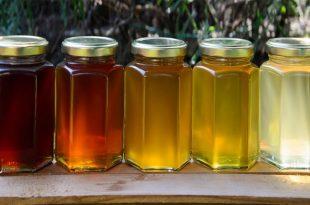 فوائد العسل لزيادة الحيوان المنوى
