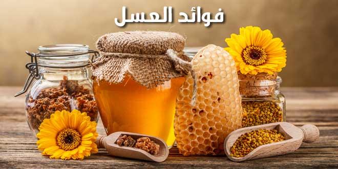 افضل انواع العسل للقرحة