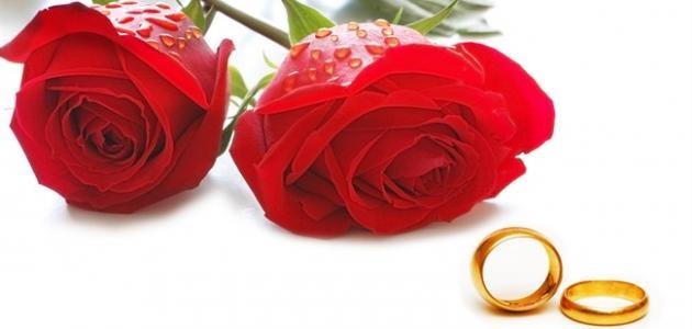 رقم معقب استخراج تصريح زواج