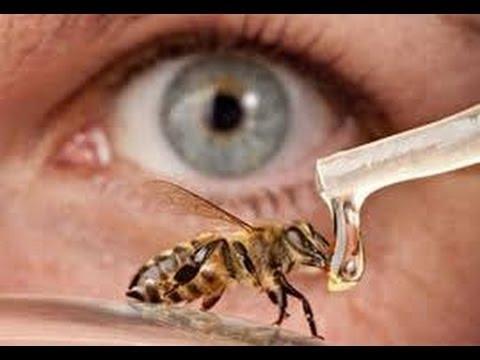 فوائد العسل لضعف النظر