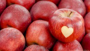 أسعار التفاح