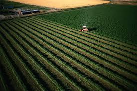 أفضل الأراضي الزراعية في تركيا