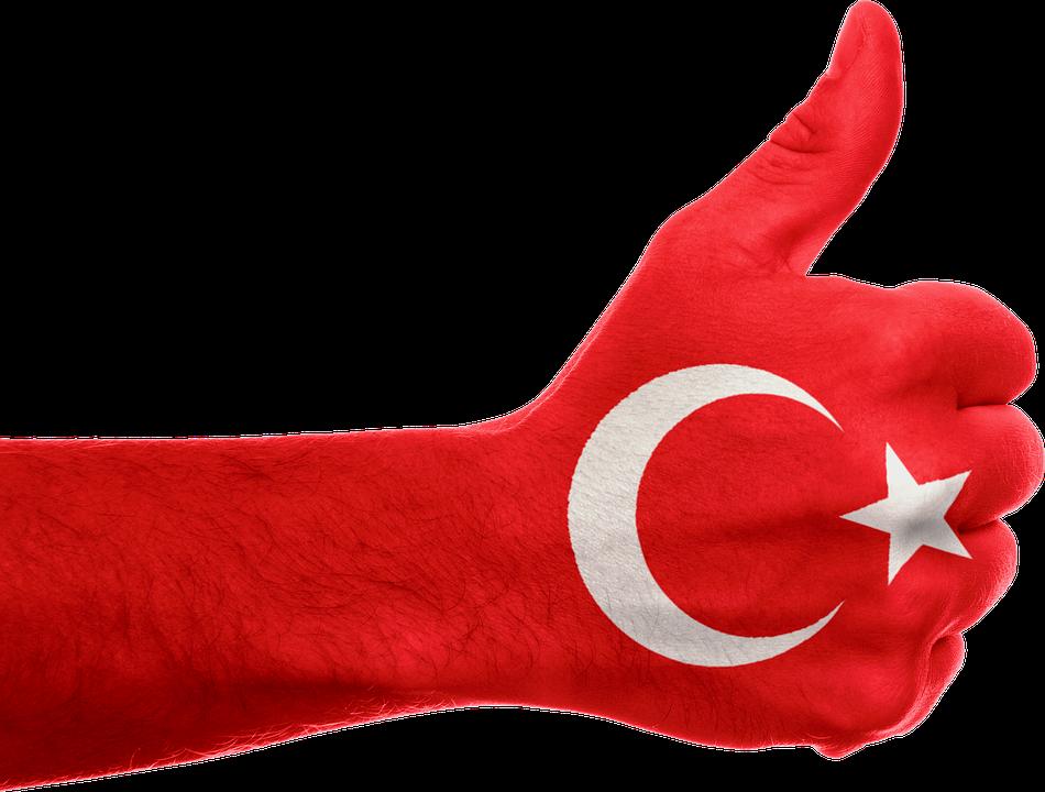 دراسة جدوى مشروع في تركيا