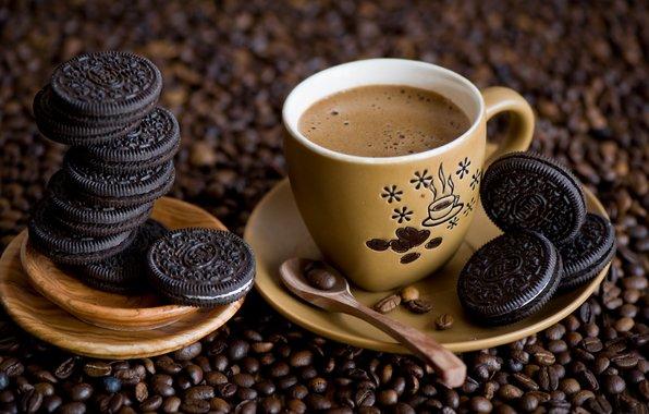 مصانع فناجين القهوة في تركيا