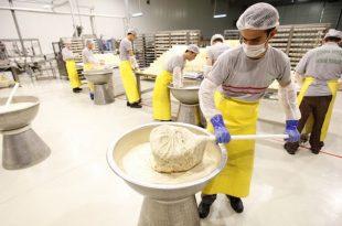 مصانع الحلاوة الطحينية في تركيا
