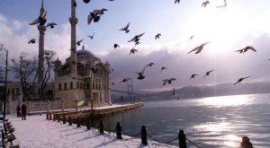 مشروع مكتب سياحي في تركيا